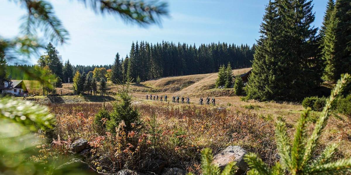 Mountainbike-Tour Stoneman Miriquidi MTB Abenteuer Erzgebirge Ore Mountains 3